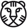 iffr 2016: party guide